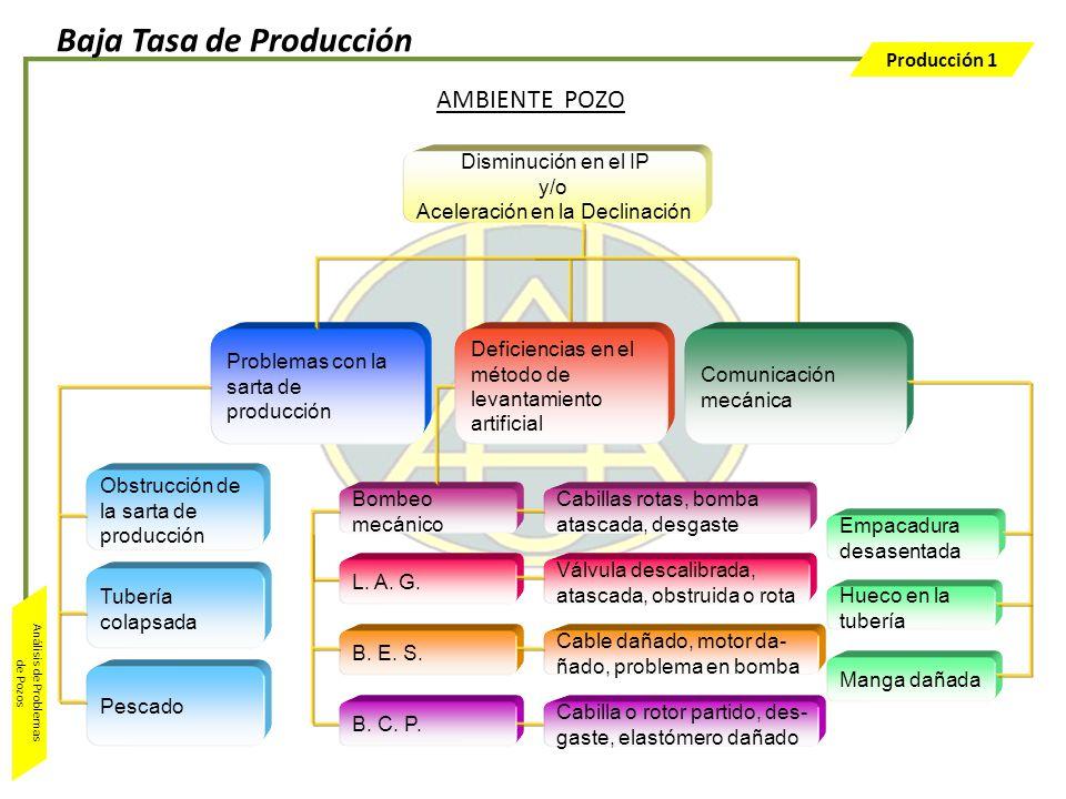 Producción 1 Análisis de Problemas de Pozos AMBIENTE POZO Disminución en el IP y/o Aceleración en la Declinación Problemas con la sarta de producción