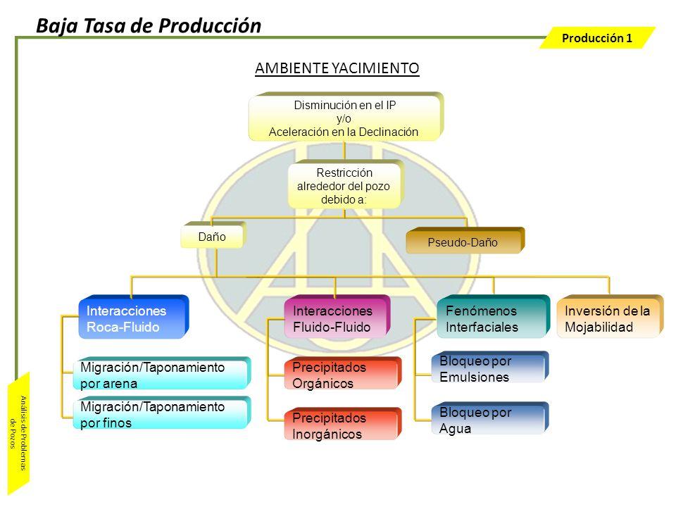 Producción 1 Análisis de Problemas de Pozos Interacciones Fluido-Fluido Precipitados Inorgánicos Precipitados Orgánicos AMBIENTE YACIMIENTO Disminució
