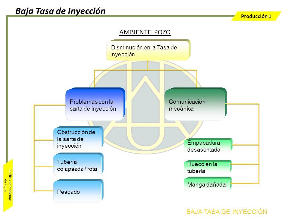 Producción 1 Análisis de Problemas de Pozos AMBIENTE POZO Disminución en la Tasa de Inyección Problemas con la sarta de inyección Obstrucción de la sa