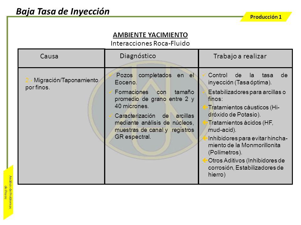 Producción 1 Análisis de Problemas de Pozos Trabajo a realizar Control de la tasa de inyección (Tasa óptima). Estabilizadores para arcillas o finos: ç