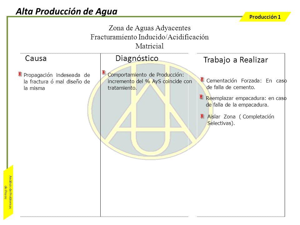 Producción 1 Análisis de Problemas de Pozos Comportamiento de Producción: incremento del % AyS coincide con tratamiento. Propagación indeseada de la f