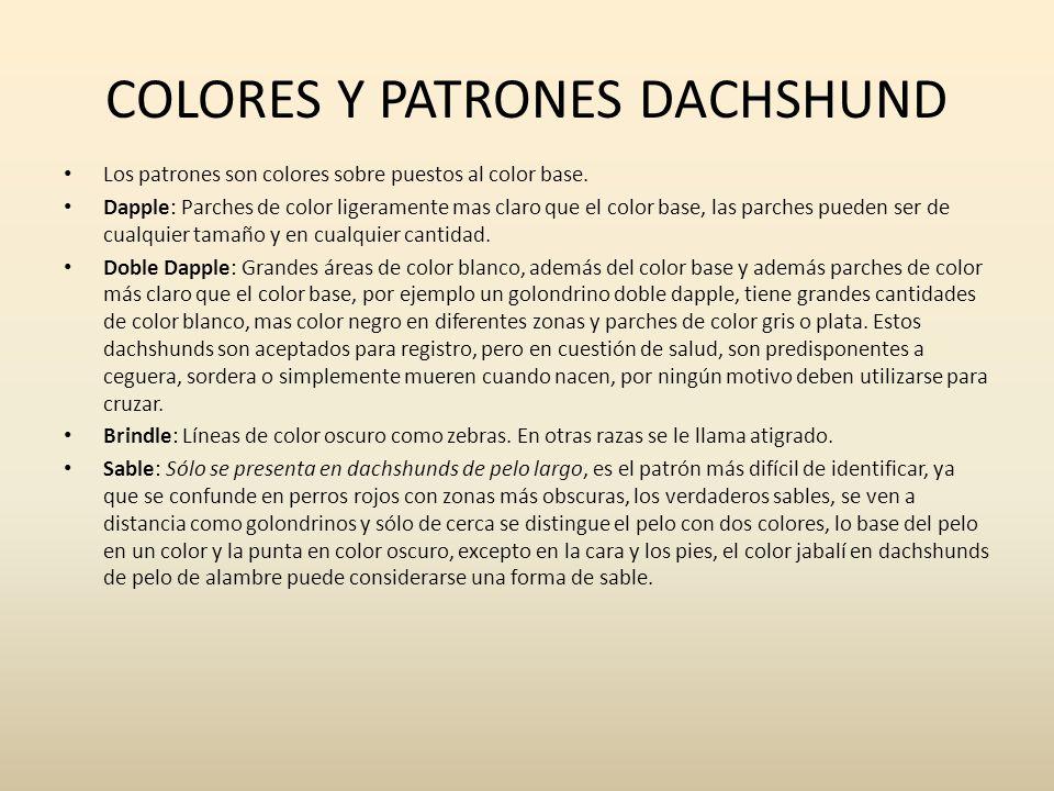 Los patrones son colores sobre puestos al color base. Dapple: Parches de color ligeramente mas claro que el color base, las parches pueden ser de cual