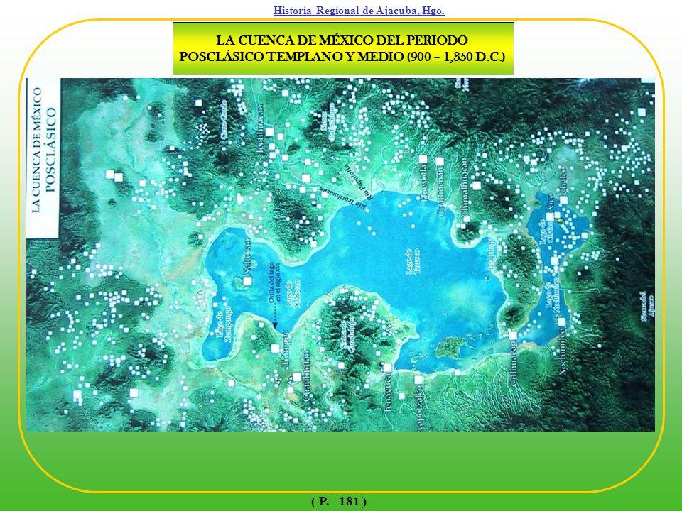 CÓDICE XOLOTL ( MAPA DE QUINATZIN ) ( P. 182 )