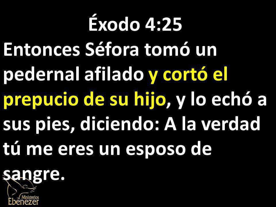Éxodo 4:25 Entonces Séfora tomó un pedernal afilado y cortó el prepucio de su hijo, y lo echó a sus pies, diciendo: A la verdad tú me eres un esposo de sangre.