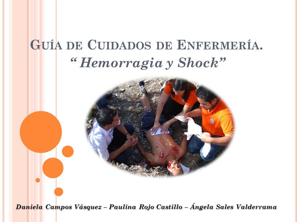 G UÍA DE C UIDADOS DE E NFERMERÍA. Hemorragia y Shock Daniela Campos Vásquez – Paulina Rojo Castillo – Ángela Sales Valderrama