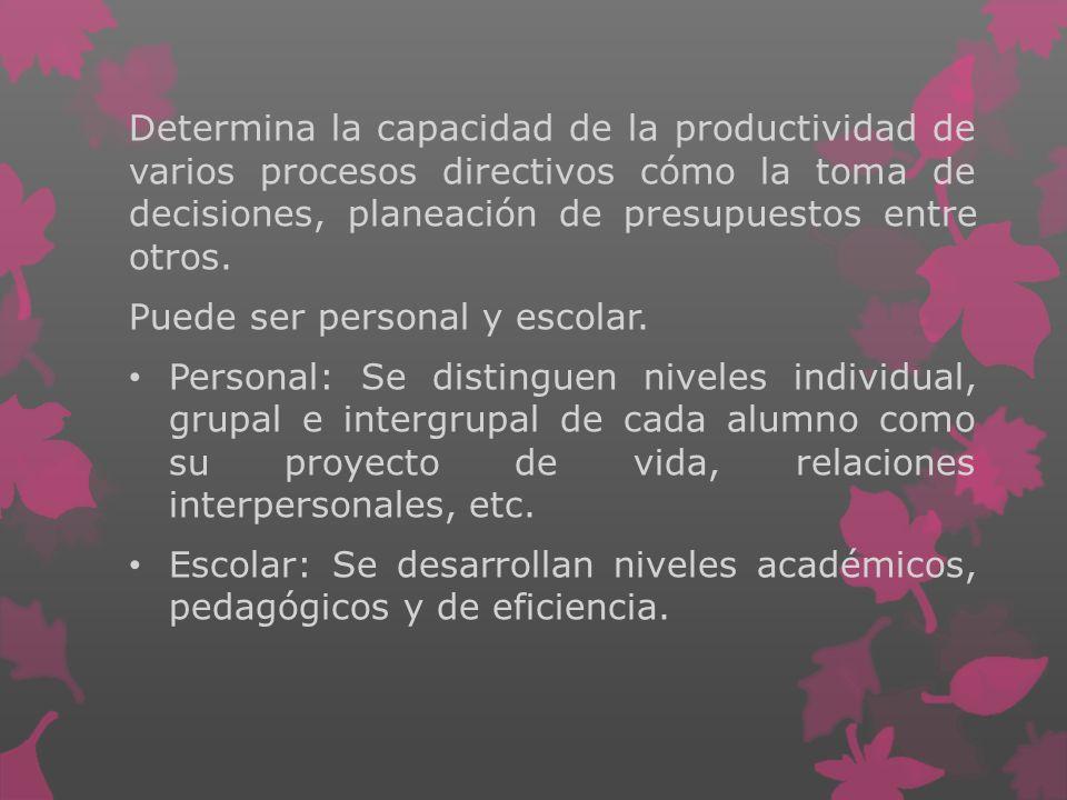 Determina la capacidad de la productividad de varios procesos directivos cómo la toma de decisiones, planeación de presupuestos entre otros. Puede ser