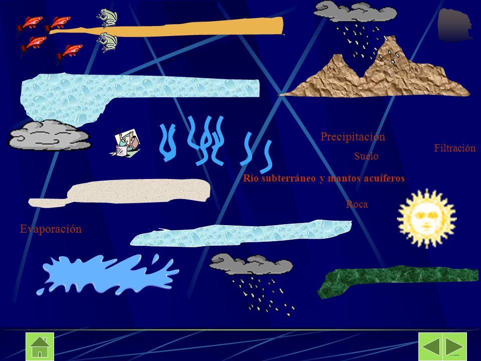 Suelo Filtración Río subterráneo y mantos acuíferos Roca Davalos Secundaria No 89 Precipitación Evaporación