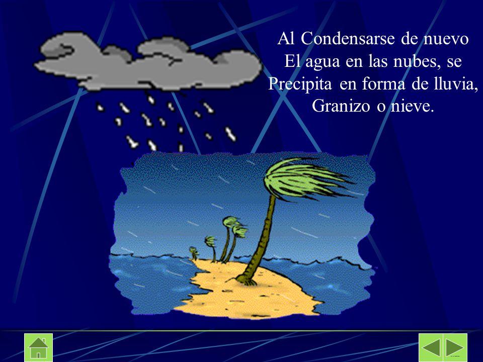 Al Condensarse de nuevo El agua en las nubes, se Precipita en forma de lluvia, Granizo o nieve. Davalos Secundaria No 89