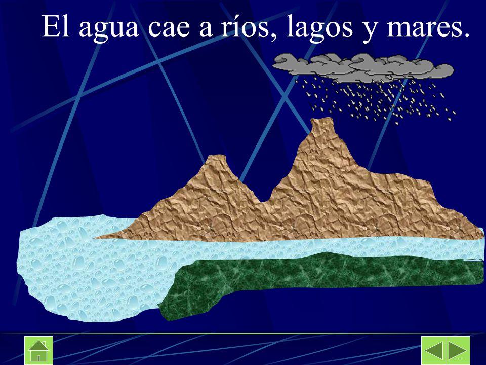 El agua cae a ríos, lagos y mares. Davalos Secundaria No 89