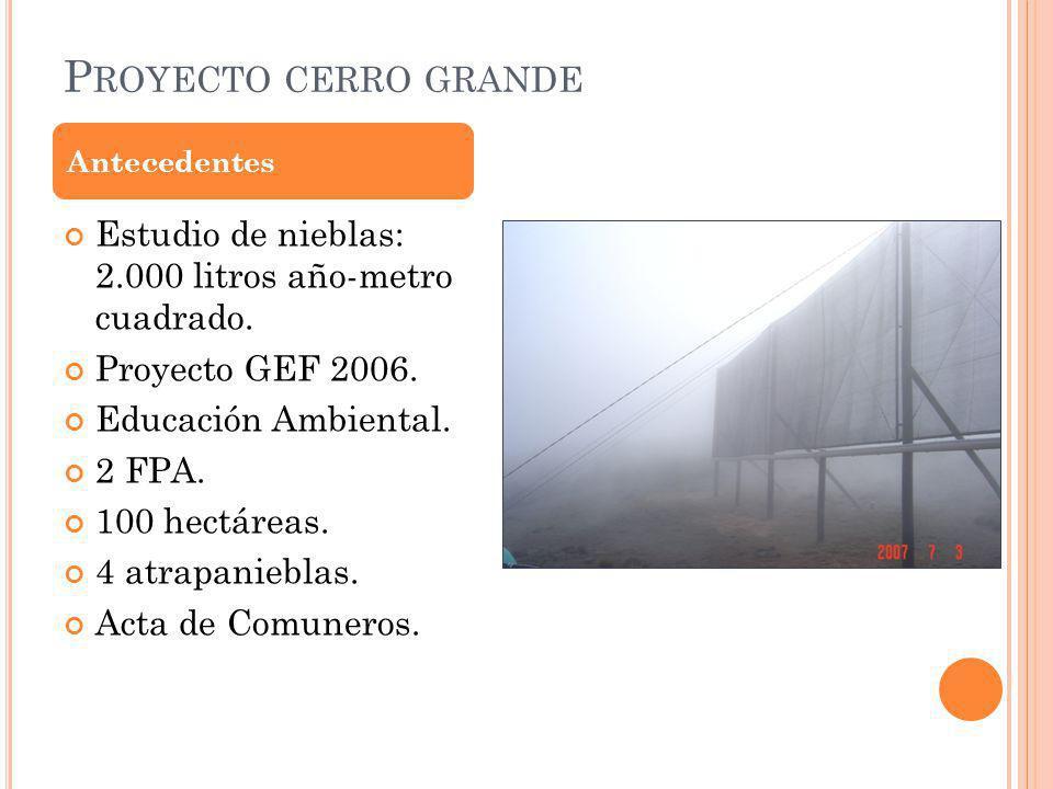 P ROYECTO CERRO GRANDE Estudio de nieblas: 2.000 litros año-metro cuadrado.
