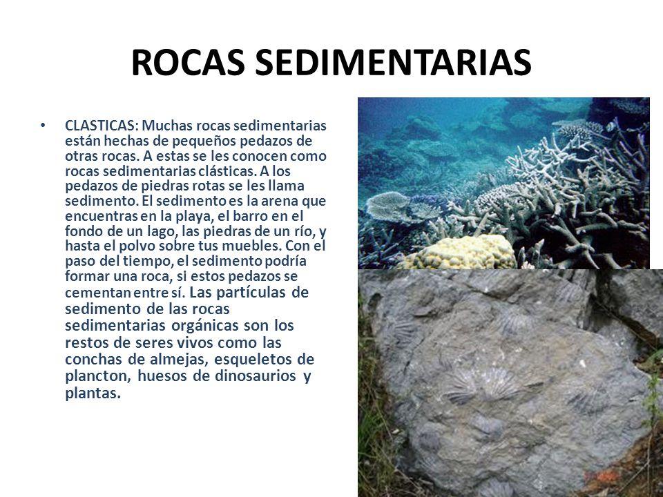 ROCAS SEDIMENTARIAS CLASTICAS: Muchas rocas sedimentarias están hechas de pequeños pedazos de otras rocas. A estas se les conocen como rocas sedimenta