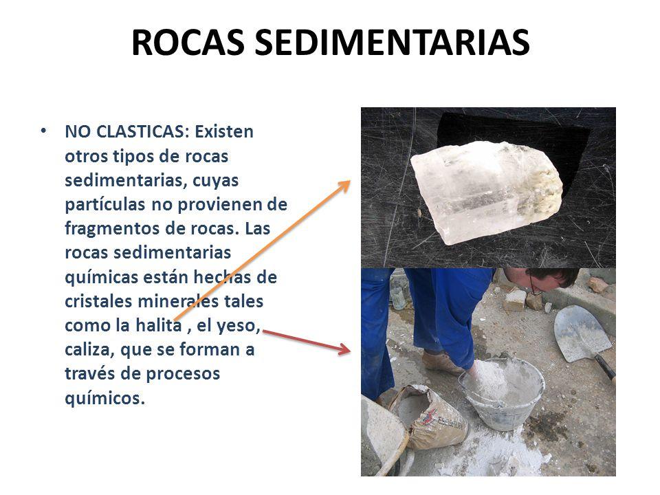 ROCAS SEDIMENTARIAS NO CLASTICAS: Existen otros tipos de rocas sedimentarias, cuyas partículas no provienen de fragmentos de rocas. Las rocas sediment