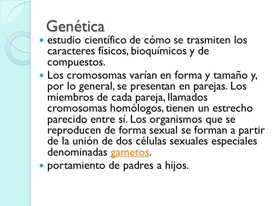 Genética estudio científico de cómo se trasmiten los caracteres físicos, bioquímicos y de compuestos. Los cromosomas varían en forma y tamaño y, por l