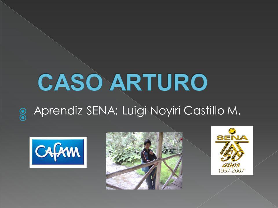 Aprendiz SENA: Luigi Noyiri Castillo M.