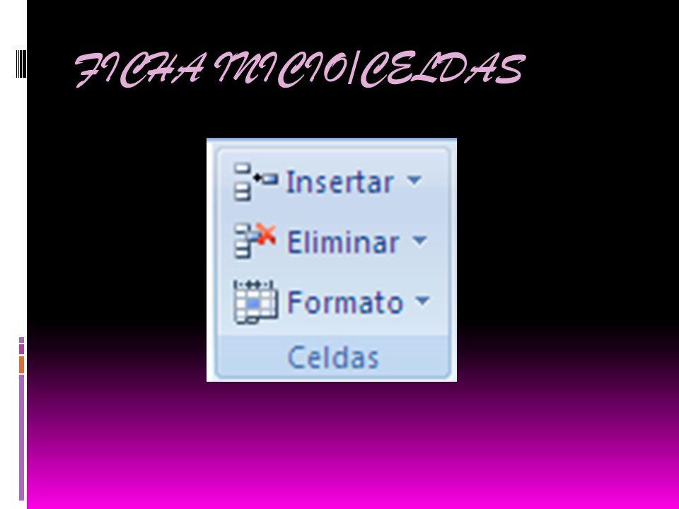 FICHA INICIO/CELDAS