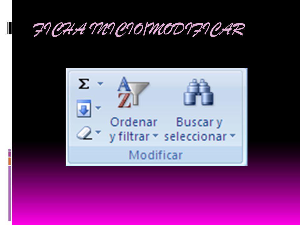 FICHA INICIO/MODIFICAR