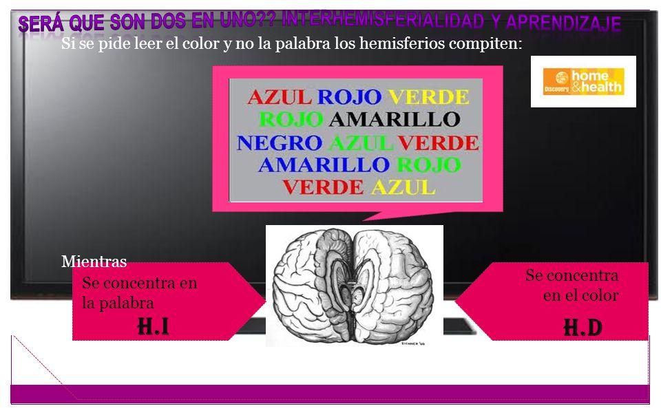 Se concentra en la palabra H.I Se concentra en el color H.d Si se pide leer el color y no la palabra los hemisferios compiten: Mientras