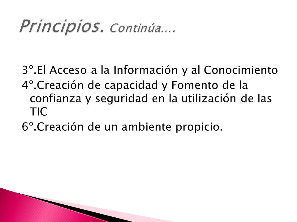 3º.El Acceso a la Información y al Conocimiento 4º.Creación de capacidad y Fomento de la confianza y seguridad en la utilización de las TIC 6º.Creación de un ambiente propicio.