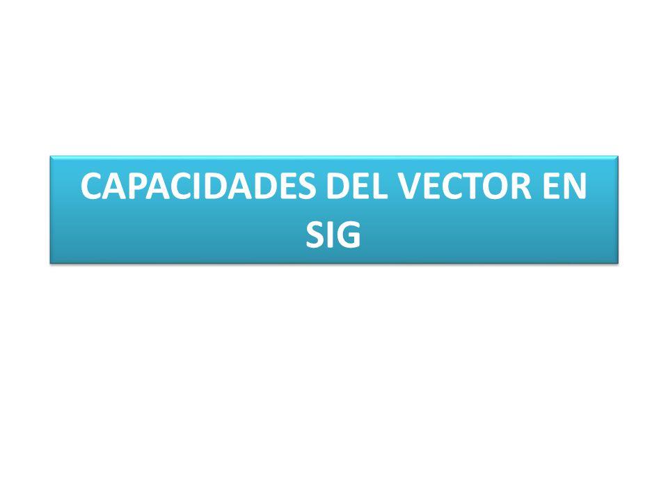 CAPACIDADES DEL VECTOR EN SIG