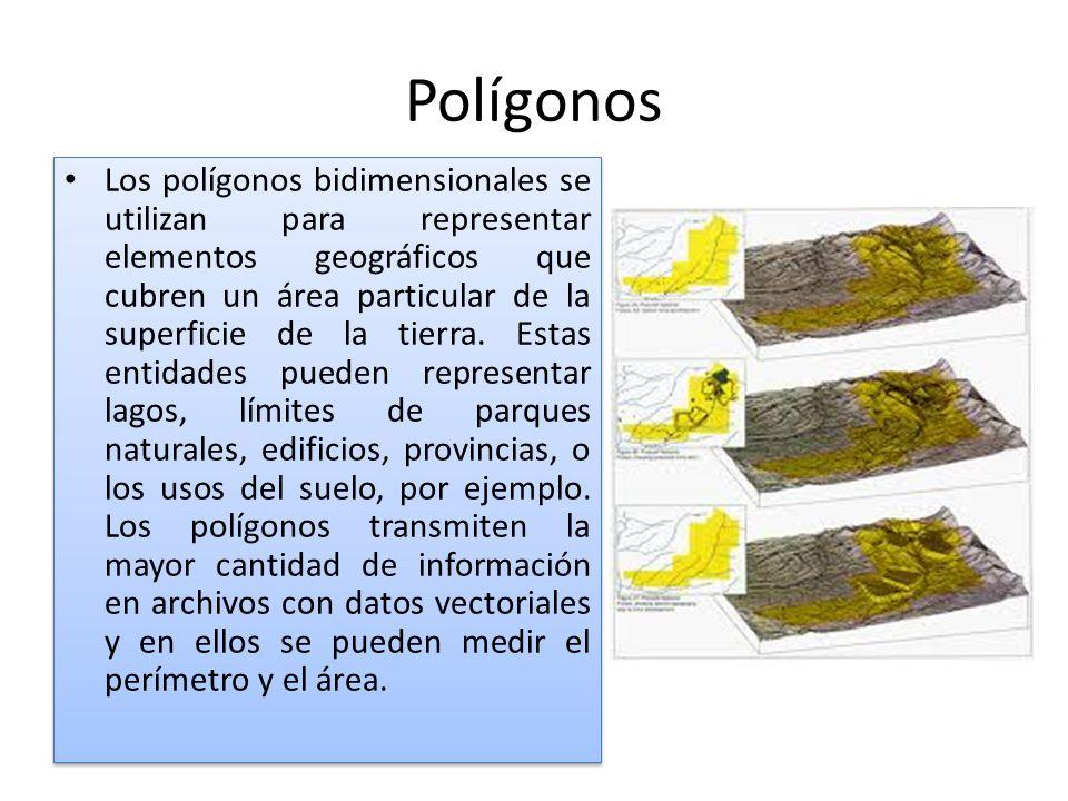 Polígonos Los polígonos bidimensionales se utilizan para representar elementos geográficos que cubren un área particular de la superficie de la tierra.