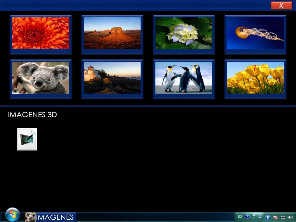 X X foto Nombre: sebastian Apellido: gonzalez Hotmail: se.ba.123@hotmail.com S.G.F F X X DISCO DURO RAM FREE