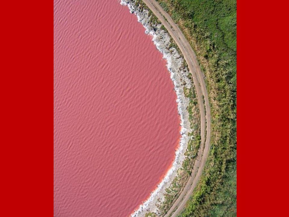 Lago Retba.- Senegal El lago Retba o Lac Rose está situado al norte de la península de Cap Vert, en Senegal.