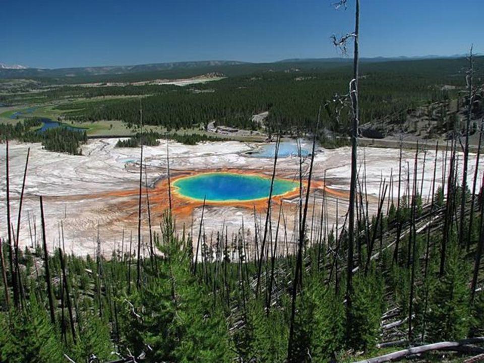 Manantial Grand Prismati.- Wyoming Es el más grande de los Estados Unidos y el tercero del mundo.
