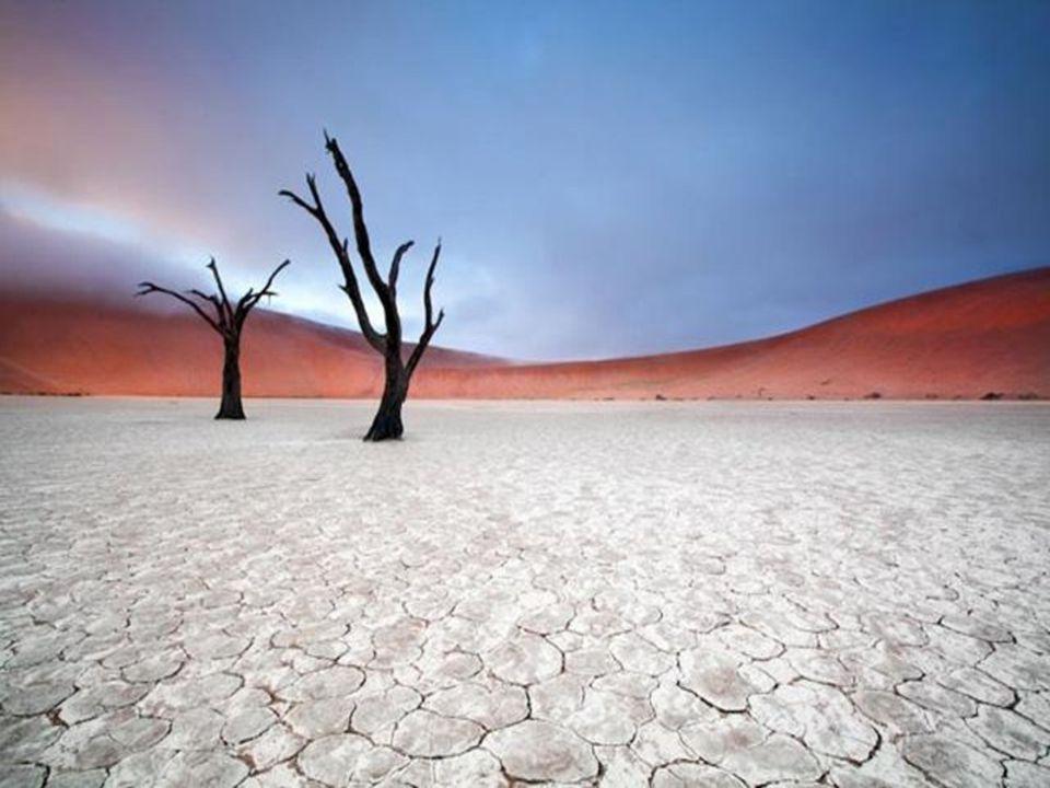 Sossusvlei.- Namibia Es una gran laguna de barro situada a unos 2 Km de Sossusvlei.