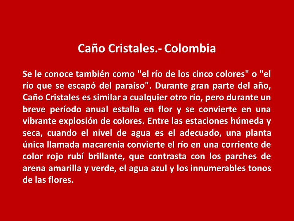 Caño Cristales.- Colombia Se le conoce también como el río de los cinco colores o el río que se escapó del paraíso .