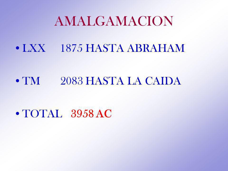 AMALGAMACION LXX 1875 HASTA ABRAHAM TM 2083 HASTA LA CAIDA TOTAL 3958 AC