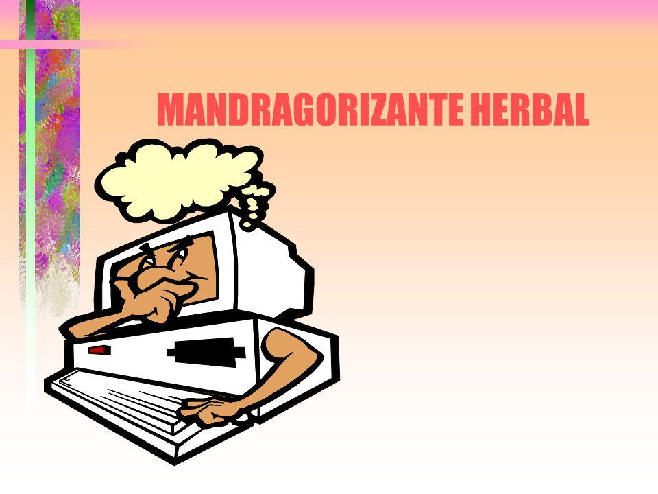MANDRAGORIZANTE HERBAL