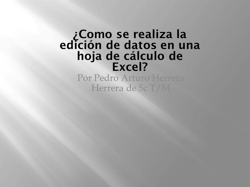 ¿Como se realiza la edición de datos en una hoja de cálculo de Excel? Por Pedro Arturo Herrera Herrera de 5c T/M