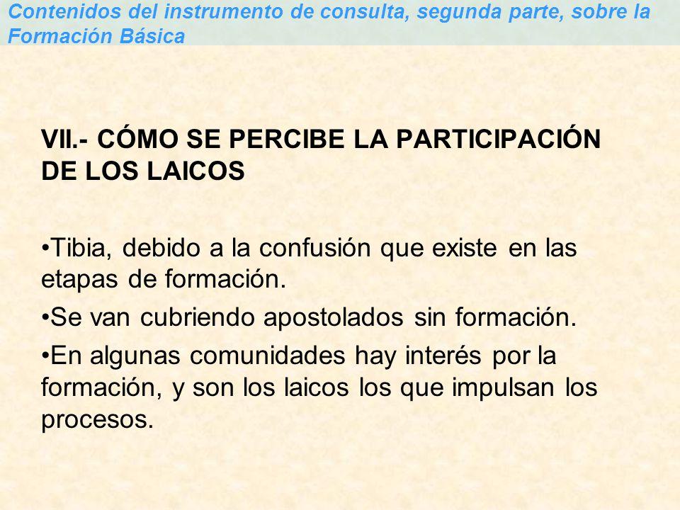 VII.- CÓMO SE PERCIBE LA PARTICIPACIÓN DE LOS LAICOS Tibia, debido a la confusión que existe en las etapas de formación. Se van cubriendo apostolados