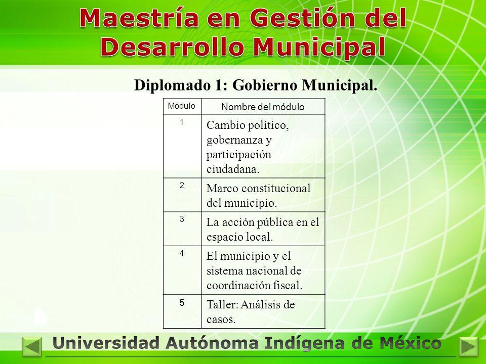 Diplomado 1: Gobierno Municipal.