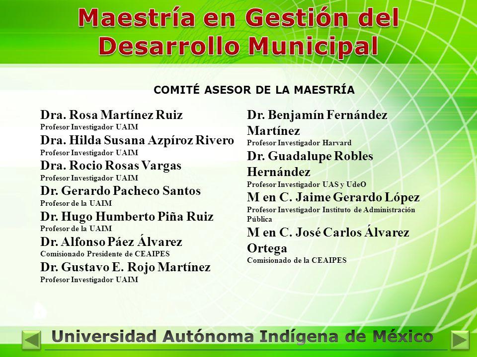 Dra. Rosa Martínez Ruiz Profesor Investigador UAIM Dra. Hilda Susana Azpíroz Rivero Profesor Investigador UAIM Dra. Rocio Rosas Vargas Profesor Invest