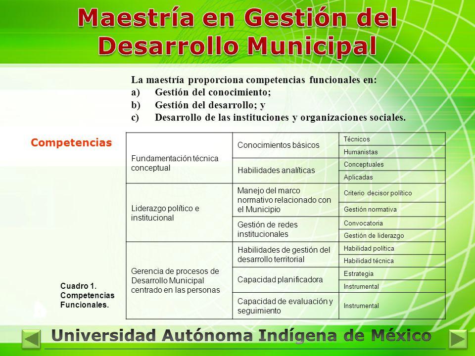 Competencias Cuadro 1. Competencias Funcionales. Fundamentación técnica conceptual Conocimientos básicos Técnicos Humanistas Habilidades analíticas Co