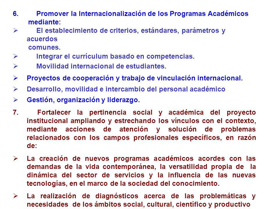 6. Promover la Internacionalización de los Programas Académicos mediante: El establecimiento de criterios, estándares, parámetros y acuerdos comunes.