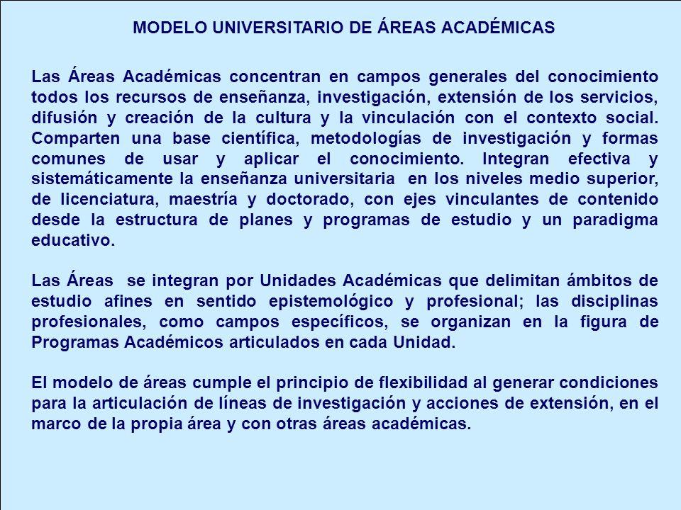 MODELO UNIVERSITARIO DE ÁREAS ACADÉMICAS Las Áreas Académicas concentran en campos generales del conocimiento todos los recursos de enseñanza, investi