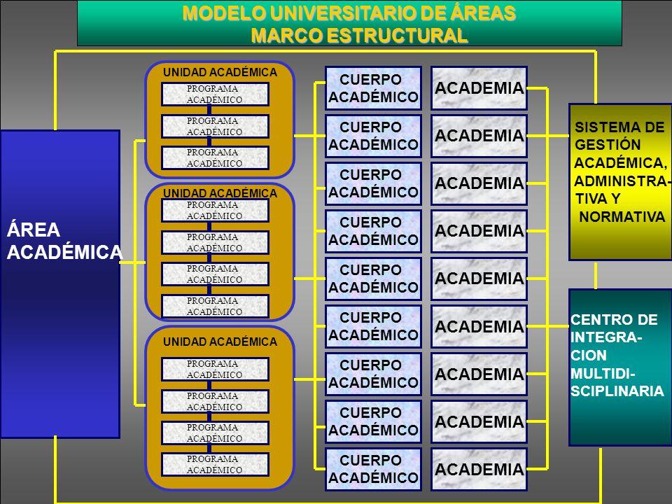 MODELO UNIVERSITARIO DE ÁREAS MODELO UNIVERSITARIO DE ÁREAS MARCO ESTRUCTURAL MARCO ESTRUCTURAL CENTRO DE INTEGRA- CION MULTIDI- SCIPLINARIA SISTEMA D