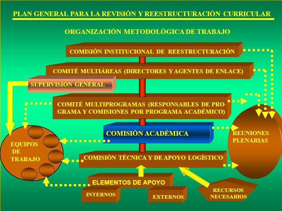 PLAN GENERAL PARA LA REVISIÓN Y REESTRUCTURACIÓN CURRICULAR ORGANIZACIÓN METODOLÓGICA DE TRABAJO COMISIÓN INSTITUCIONAL DE REESTRUCTURACIÓN COMITÉ MUL