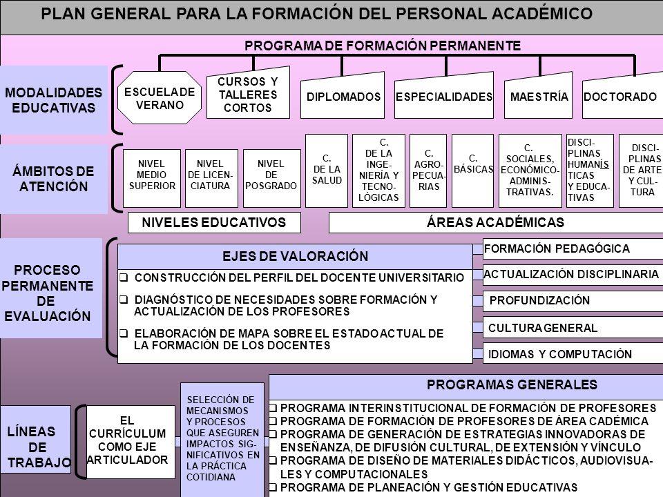 PLAN GENERAL PARA LA FORMACIÓN DEL PERSONAL ACADÉMICO CURSOS Y TALLERES CORTOS ESCUELA DE VERANO ESPECIALIDADESDIPLOMADOSMAESTRÍADOCTORADO ÁMBITOS DE