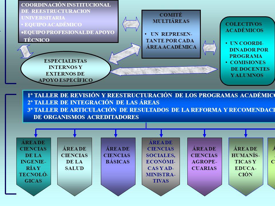 PLAN OPERATIVO PARA LA CONCRECION DE LA REESTRUCTURACION UNIVERSITARIA ESTRUCTURA DE ORGANI- ZACIÓN FACILITADORA ESTRUCTURA DE PARTICI- PACIÓN HORIZON