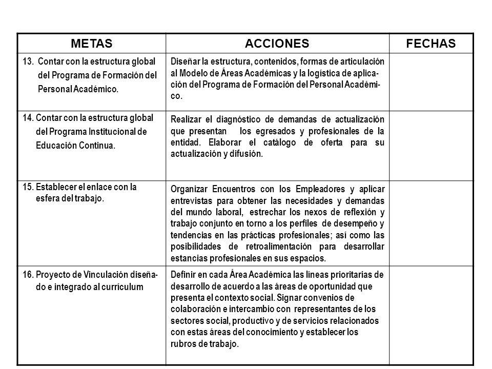 METASACCIONESFECHAS 13. Contar con la estructura global del Programa de Formación del Personal Académico. Diseñar la estructura, contenidos, formas de