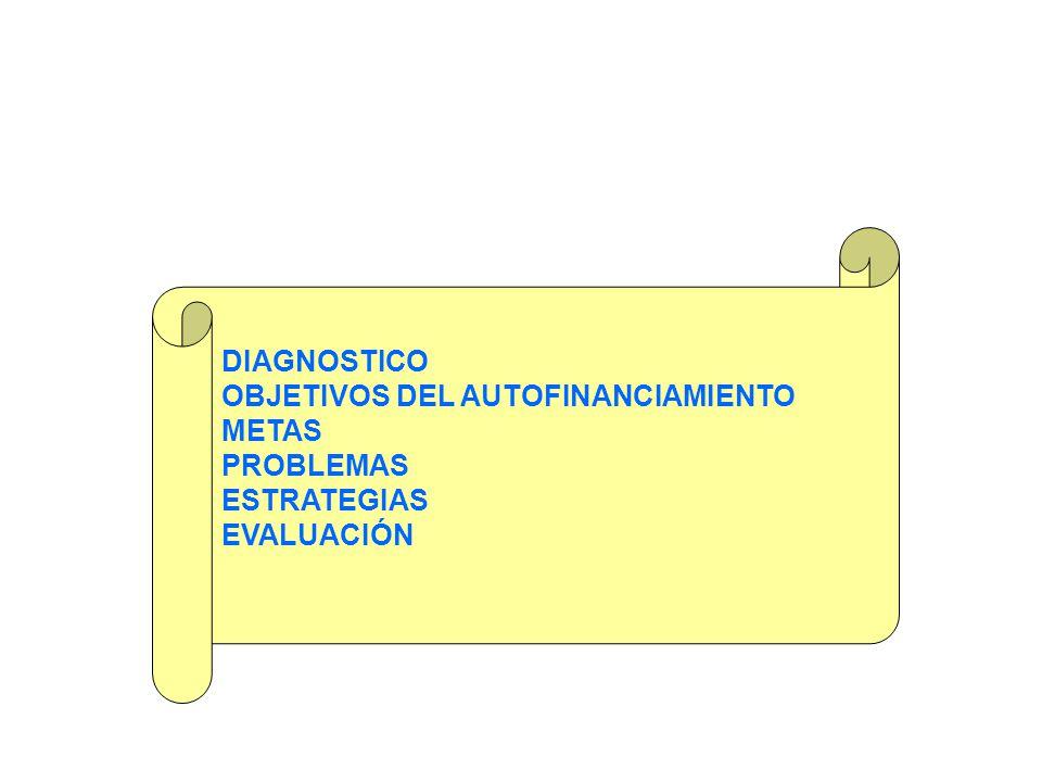 DIAGNOSTICO OBJETIVOS DEL AUTOFINANCIAMIENTO METAS PROBLEMAS ESTRATEGIAS EVALUACIÓN