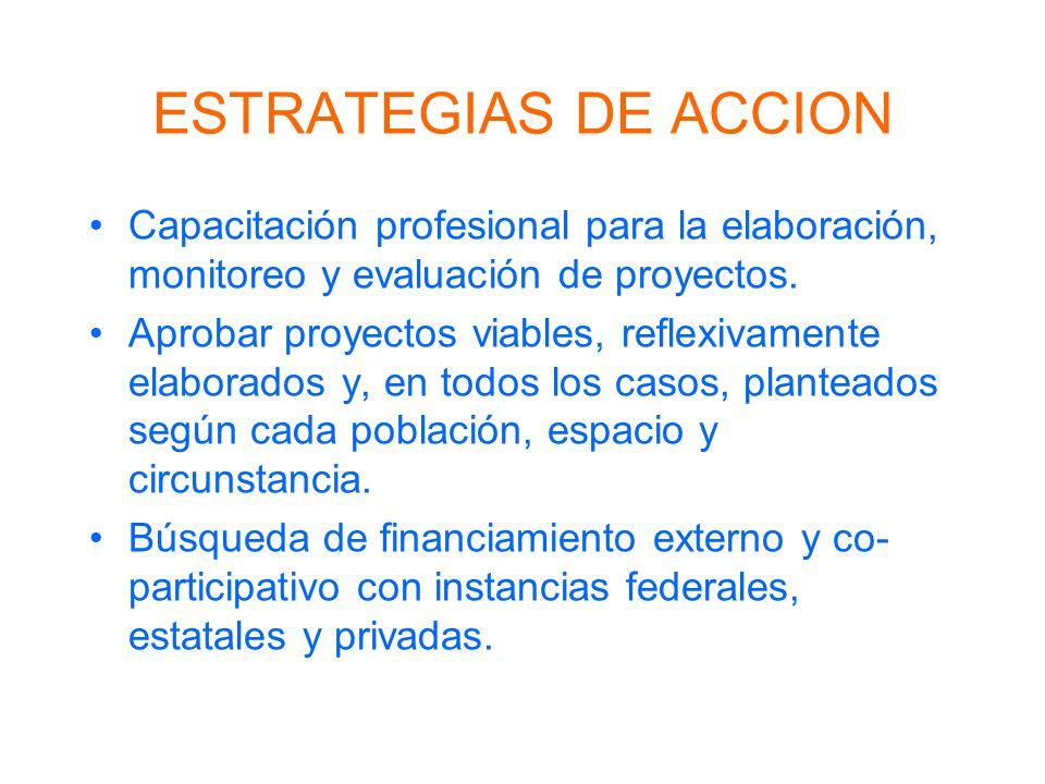 ESTRATEGIAS DE ACCION Capacitación profesional para la elaboración, monitoreo y evaluación de proyectos. Aprobar proyectos viables, reflexivamente ela