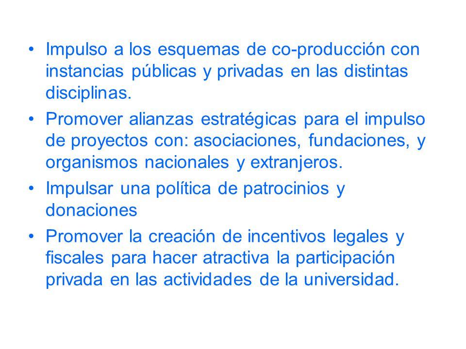 Impulso a los esquemas de co-producción con instancias públicas y privadas en las distintas disciplinas. Promover alianzas estratégicas para el impuls