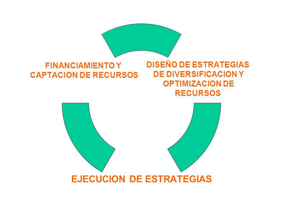 DISEÑO DE ESTRATEGIAS DE DIVERSIFICACION Y OPTIMIZACION DE RECURSOS EJECUCION DE ESTRATEGIAS FINANCIAMIENTO Y CAPTACION DE RECURSOS