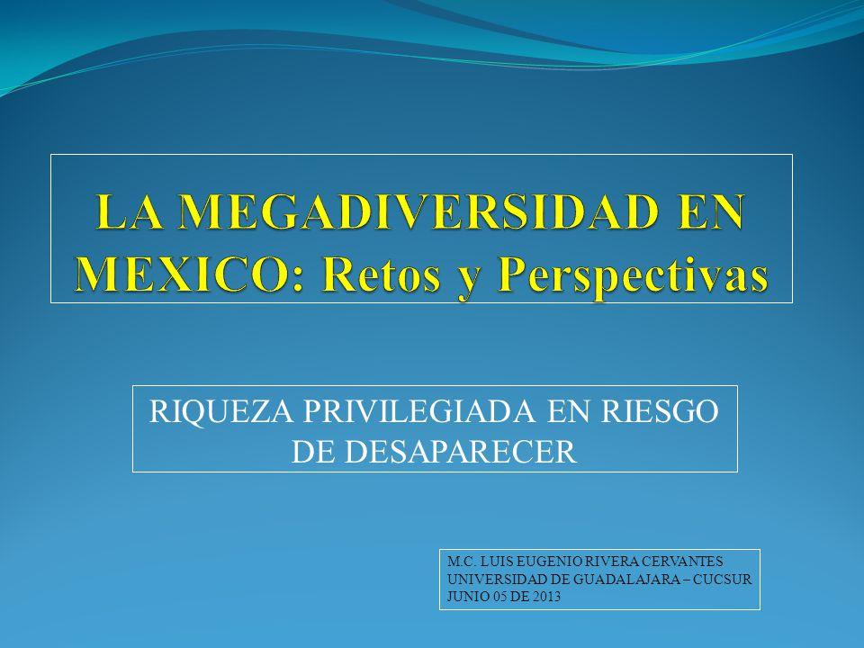 RIQUEZA PRIVILEGIADA EN RIESGO DE DESAPARECER M.C. LUIS EUGENIO RIVERA CERVANTES UNIVERSIDAD DE GUADALAJARA – CUCSUR JUNIO 05 DE 2013