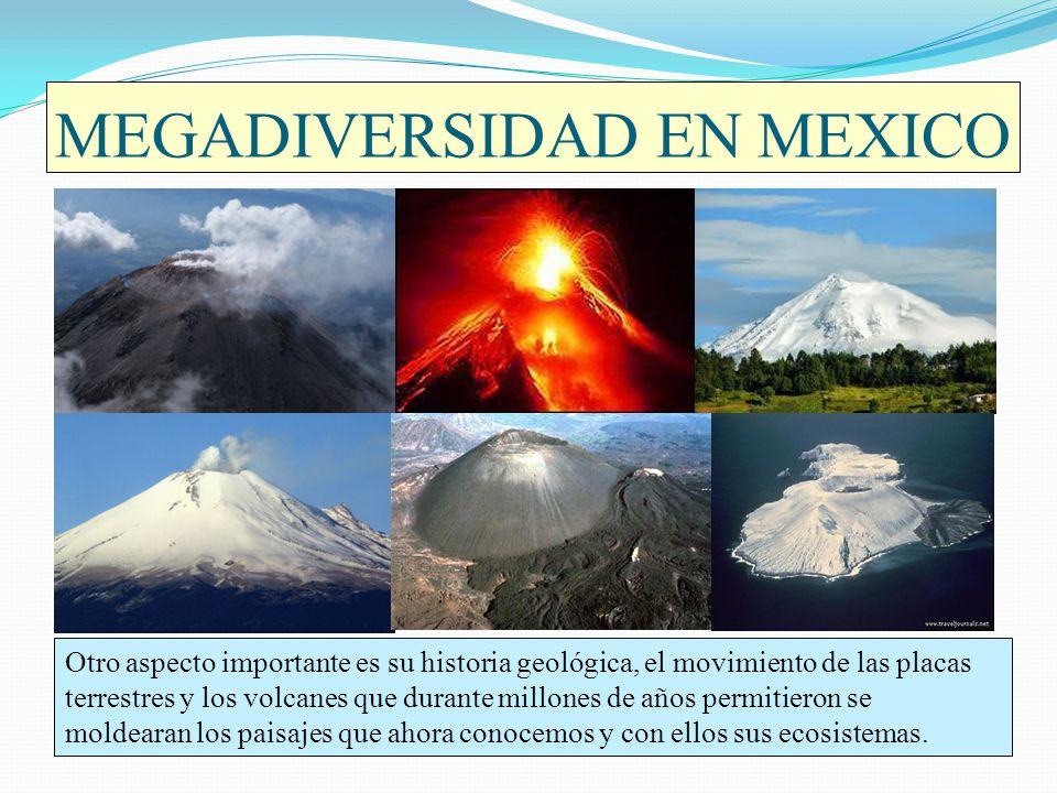 MEGADIVERSIDAD EN MEXICO Otro aspecto importante es su historia geológica, el movimiento de las placas terrestres y los volcanes que durante millones