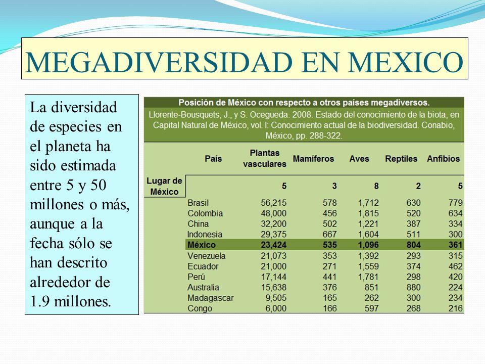 MEGADIVERSIDAD EN MEXICO Debido a la alta biodiversidad en México (casi 65,000 especies), nuestro país se encuentra en el selecto grupo de países que albergan el 70% de la biodiversidad del mundo junto con Brasil, Colombia, Ecuador, Perú, Indonesia, Zaire, China, India, Congo, Madagascar, Malasia, Papúa Nueva Guinea, Filipinas, Australia, Estados Unidos, Sudáfrica y Venezuela.